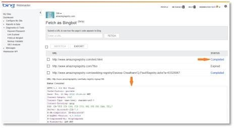 Bing Webmaster Tools Fetch as Bingbot