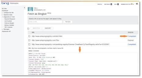 Bing Webmaster Tools Fetch as Bingbot