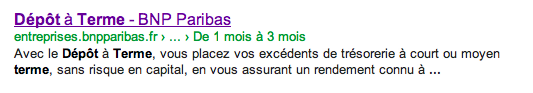 BNPc SERP Google