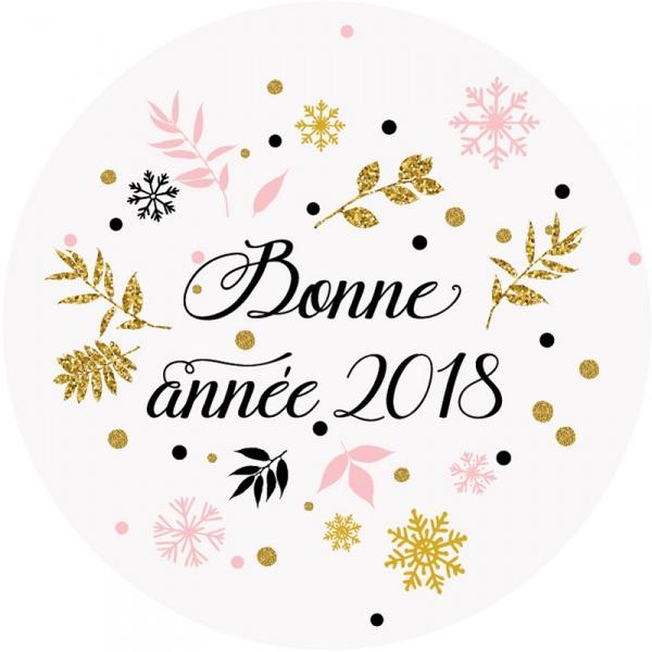 Parapentastique année 2018