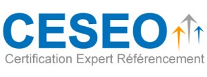 Certification Ceseo