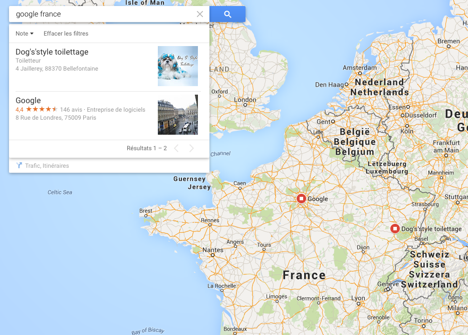 dogs-style-google-france