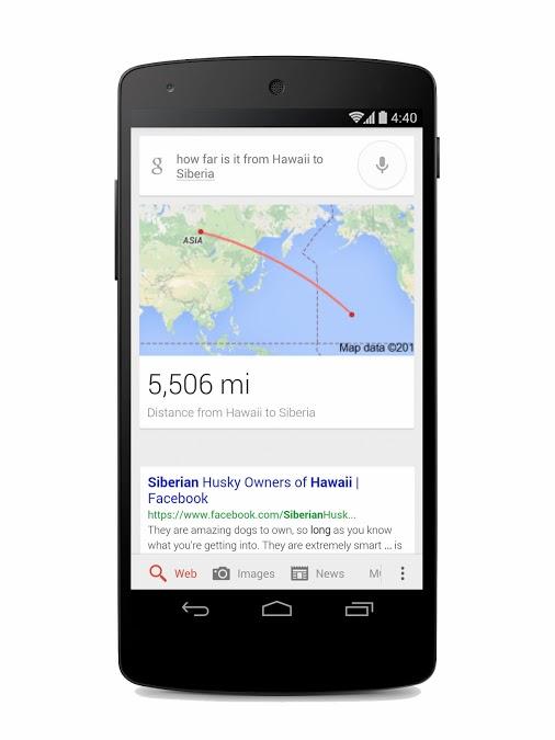 google-a-vol-d-oiseau