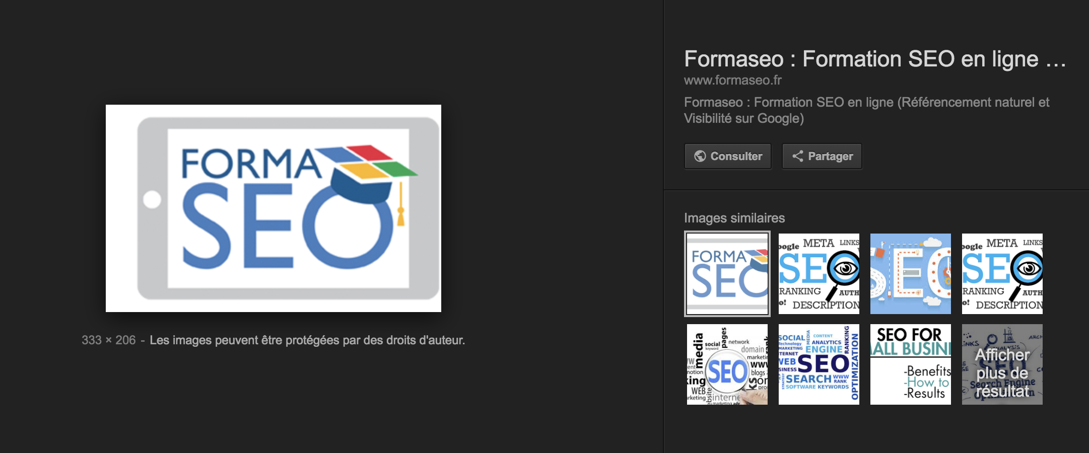 google-images-bouton-view-image.png