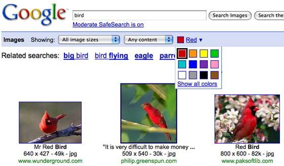 Filtre Google Images
