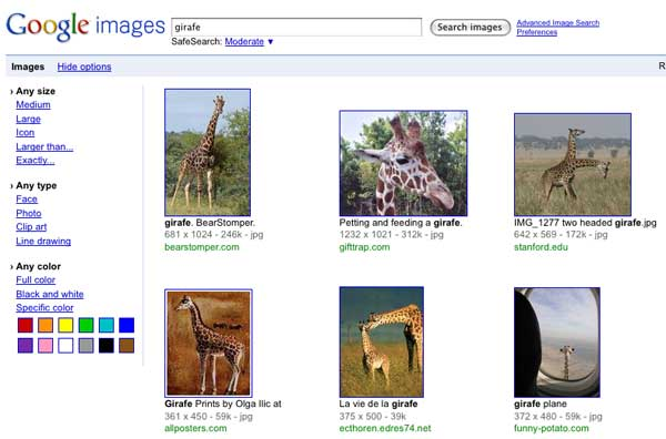 Google Images - Show Opions