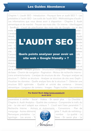 Guide PDF : L'Audit SEO - Quels points analyser pour avoir un site Google friendly ?