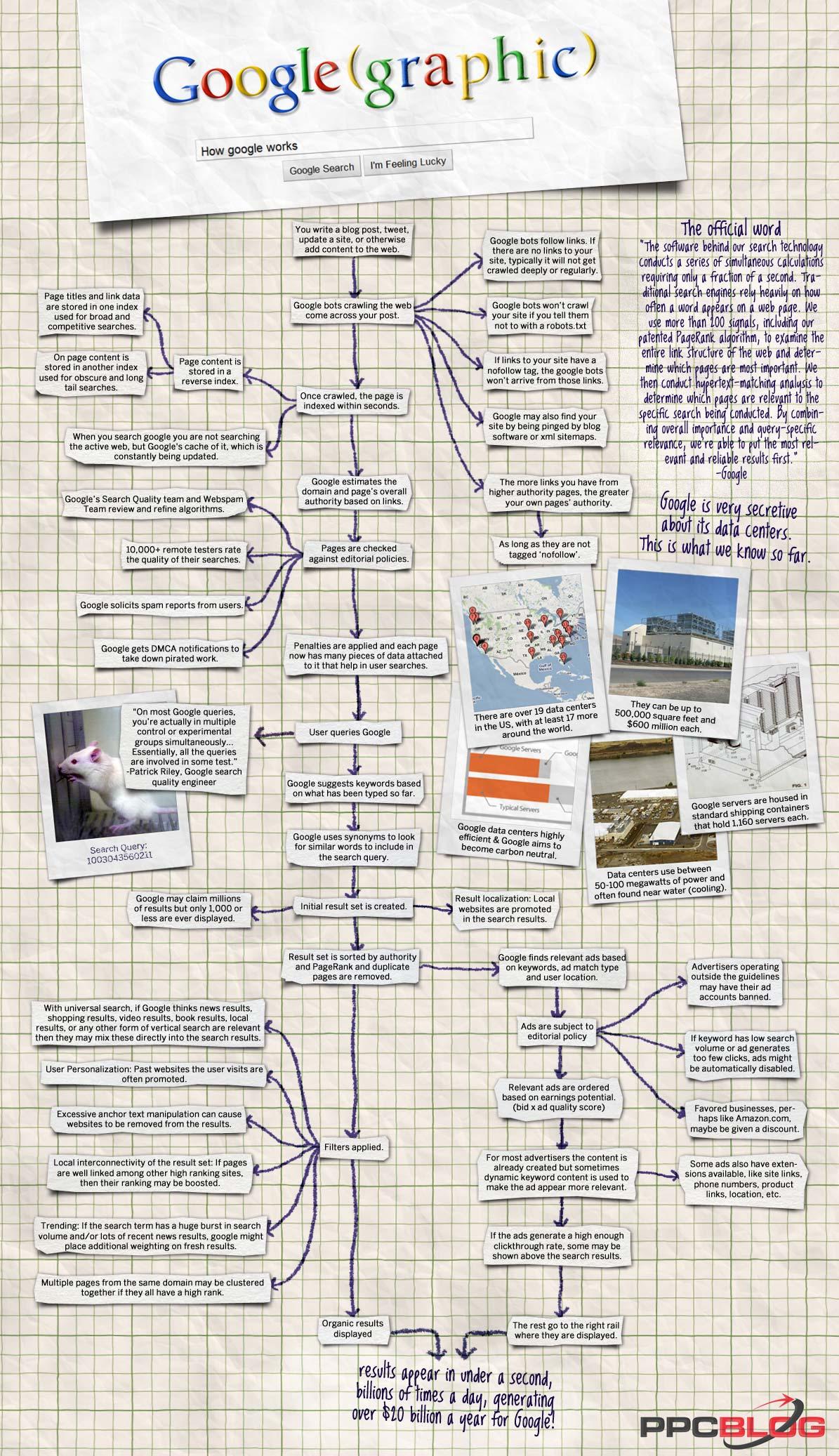 Infographie SEO 2