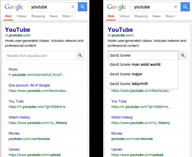 sitelinks-search-box