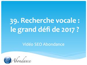 La Recherche Vocale, le Grand Défi de 2017 ?