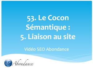 Le Cocon Sémantique : 5. Liaison des cocons au site web