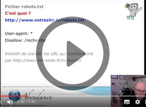 Fichier robots.txt et SEO. Vidéo SEO