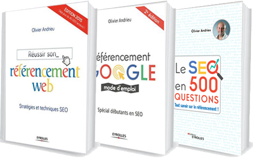 Livre SEO Référencement Google mode d'emploi et Réussir son référencement web