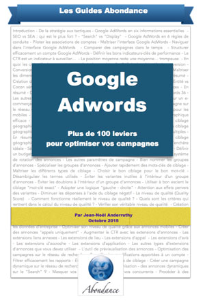 guide-abondance-adwords