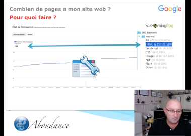 Combien de pages a mon site web (et pourquoi c'est important en SEO) ? Vidéo SEO