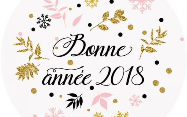Bonne année SEO 2018 !