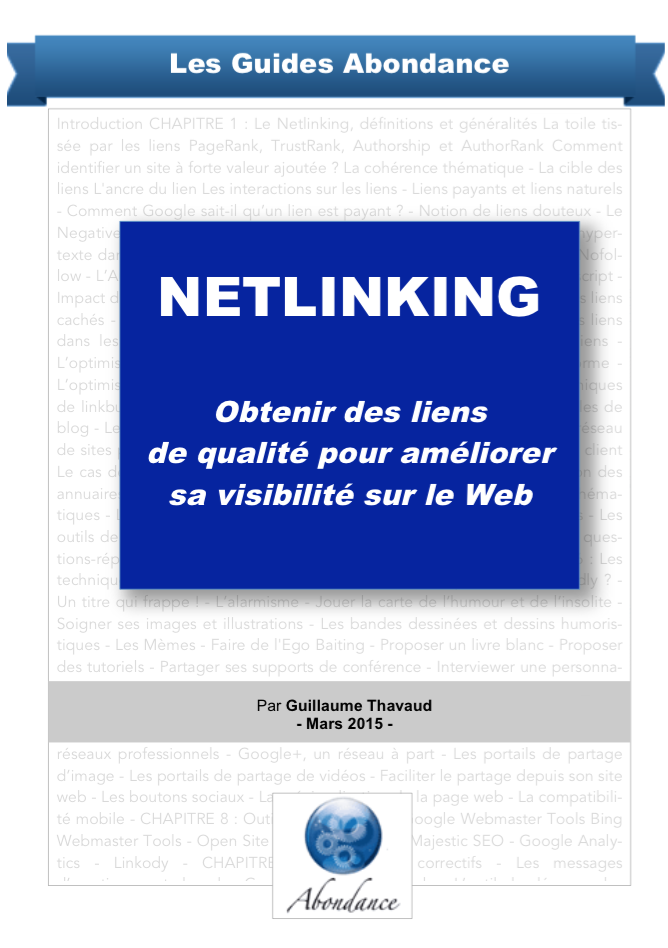 guide-netlinkink-couverture