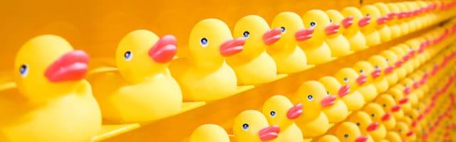 DuckDuckGo atteint les 30 millions de requêtes traitées chaque jour