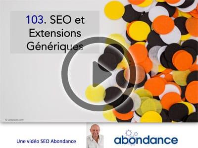 Extensions Génériques et SEO -  Vidéo SEO