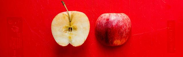 Apple va-t-il lancer un moteur de recherche concurrent de Google et Bing ?