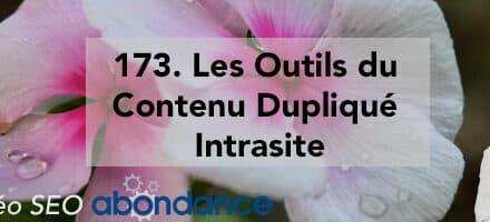 Les Outils du Contenu Dupliqué Intrasite –  Vidéo SEO Abondance N°173