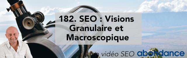 SEO : Visions Granulaire et Macroscopique –  Vidéo SEO Abondance N°182